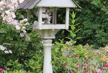 Кормушки и домики для птиц, насекомых и прочей живности