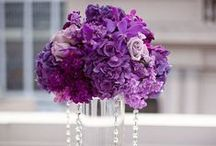 Color wedding: Purple