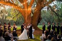 Location: marriage registration