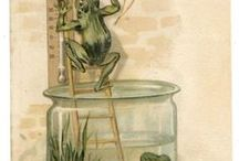 Frogs. Vintage art. / I love frogs and toads!!!
