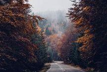 Go any road