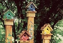 "Birdhouse Lane / Dedicated To My Dad - One Of His Greatest Hobbies Is Making "" Fantastic Bird Houses """