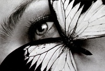 Butterfly Kisses / Try to catch one...it will escape you