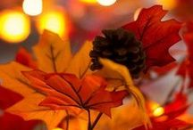 ❤ Seasons: autumn/fall ❤