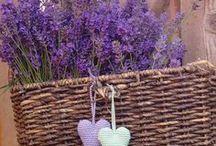 ❤ Flowers: purple ❤