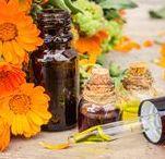 Les bienfaits du calendula / Découvrez tous les bienfaits du Calendula, une plante thérapeutique aux milles vertus qui fait des miracles ! Elle sauve les peaux les plus sensibles de l'eczéma, du psoriasis et autres irritations grâce à ses vertus antibactériennes et anti-inflammatoires. Une pépite à adopter d'urgence pour toutes celles et ceux souffrant de maladies de la peau !