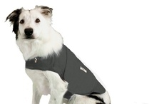 Thundershirt / Thundershirt is effective, risks no side effects and requires little to no time commitment from dog owners