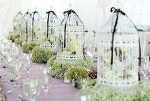 Wedding - Centerpieces
