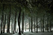 Natural tree shapes