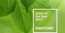 2017 Interiors Trends! / Expect A LOT of green around this year - GREENERY is Pantone's colour of 2017. Key theme: bringing the outdoors inside! #fresh