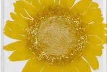 Flora Collection / The Dermond Peterson Flora collection explores nature through block print and color.