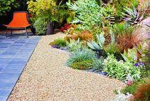 Backyard / Landscaping