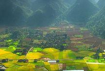 Vietnam. Chao buoi sang. / Good morning Vietnam