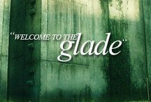 GLADERS UNITE!! / Add any gladers you like. Comment and let any of us know if you would like to join. No chain mail. And please try to stay on topic. Lol  :) pin away, Shanks!