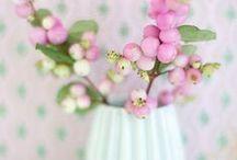 ★ FLOWER