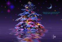 La Magie de Noël! / Des sapins de toutes les couleurs, de toutes les matières, de toutes les provinces... MAGIQUE!
