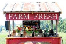 Farmer's Market / Inspiration and tips for setting up at Farmer's Markets to sell produce, baked goods, or flowers. Shop for canning jar labels & baked goods stickers at CanningCrafts.com