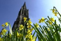 Sehenswürdigkeiten Ulm & Neu-Ulm / Impressionen der Sehenswürdigkeiten in Ulm und Neu-Ulm. #ulm #neuulm #visitbau #bawu #bayern #bavaria #donau #germany #germanytourism #deutschland #ulmermünster