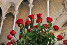 Sant Jordi / Sant Jordi, patró de Catalunya. Dia de llegenda, de roses, de llibres.... el dia dels enamorats.