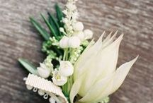 White Ivory Cream Natural