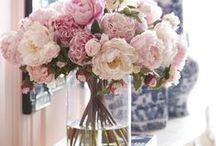 Floral / Flowers, flowers & more flowers