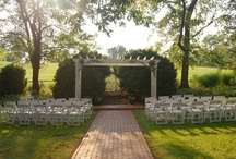 The Boxwood Gardens / The perfect ceremony space, the gardens are shaded by giant trees, surrounded by blooming shrubs and edged with century-old boxwoods.  With tucked-away fountains and flower-lined brick pathways leading to the custom pergola, the gardens are a magical setting for ceremonies with up to 180 guests.