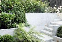 Moderni piha / Tyylikkäät, selkeät muodot, värimaailmaltaan ja kasvillisuudeltaan harkittu ja hillitty kokonaisuus.