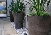 Ruukkupuutarha / Istutusastiat antavat rajattomasti helposti muunneltavia mahdollisuuksia  korostaa pihan / parvekkeen käytetyimpiä / hankalia paikoja, kuten sisäänkäyntiä ja oleskelualueita / tyhjiä kohtia. Valitse mieleisesi  kasvit, ruukut, koko, määrä, tyyli ja tunnelma.