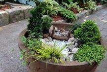 Miniatyyripuutarhat / Puutarhanrakentaminen minikoossa onnistuu kaikilta ja kaikkialla. Anna siivet mielikuvitukselle ja tarvikkeet löytyvät helposti läheltäsi - vanhat lempilelut, kivet, risut, sammalet ja minikasvit. Tuunaa, toteuta ja askartele oma unelmien miniatyyripuutarhasi.