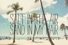Beach Bum / Wouldn't you love to be here?