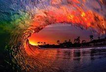 The Sensational Sea