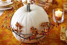 It's Fall Y'all! / by Lisa Brock
