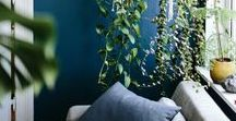 HOME SWEET HOME / Création & décoration