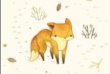 animal: fox