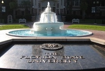 Campus Bucket List / The sights and activities you must visit and get involved in while a student on Florida State's campus.