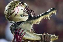 Fight, Fight, Fight for FSU! / Game Day Apparel & Goodies