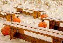 orange fall or halloween? / Autumn autunno orange