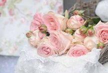 Pink delicate color / color