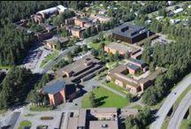 Joensuu Campus
