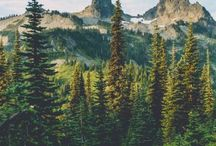 Those mountains and woods I love / by Emma gindorf