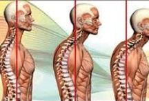 Non Surgical Treatment for Neck Pain / At Spinalogy clinic we provide non surgical treatment for neck pain. We also provide services like physiotherapy, yoga and exercises to cure your pain.