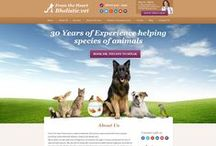Veternarian Custom Web Design / This is a collection of websites designs, interior pages and social media designs for our client.