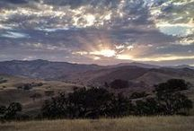 Santa Barbara Sights / Santa Barbara has so many beautiful sights to see. / by edhat Santa Barbara