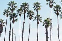 L.A.   Beach Life