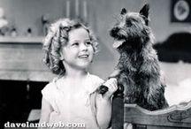 Famous folks and pet pals