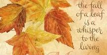 All About Autumn / Fall ~ my favorite season!
