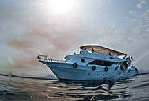 Sea / Sea - Sun - Relax