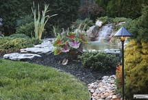 PondBuilder Water Features / PondBuilder Products in Action!!!!