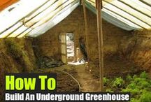 Homesteading / Self reliance, sustainable living, eco-friendly building/farming.
