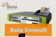 Beia Consult International Pin